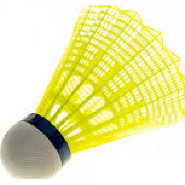 Fluturasi Badminton Babolat Cup x6